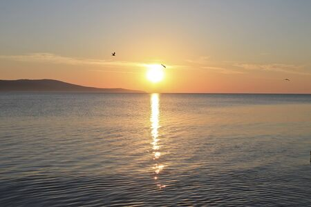 Sunrise over the ocean with beatiful gulls and seagulls
