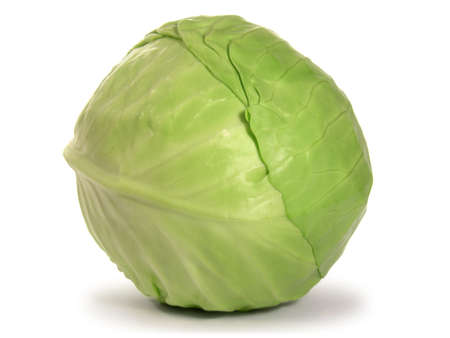 Green cabbage isolated on white background. photo
