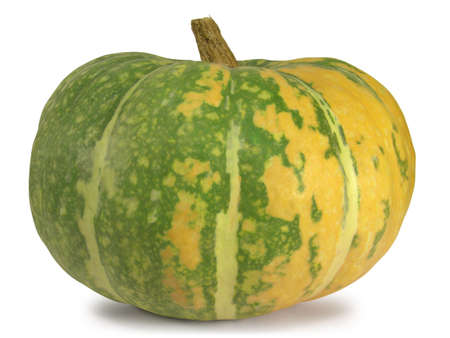 An overripe pumpkin isolated on white background.