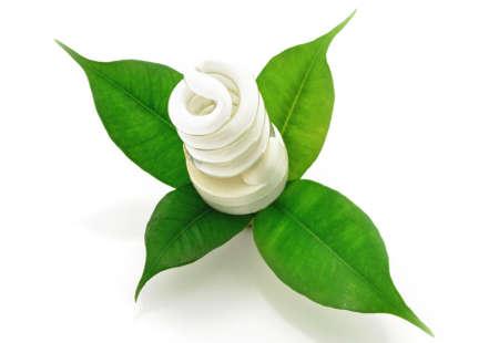 녹색 잎 에코 개념 형광등 바이오