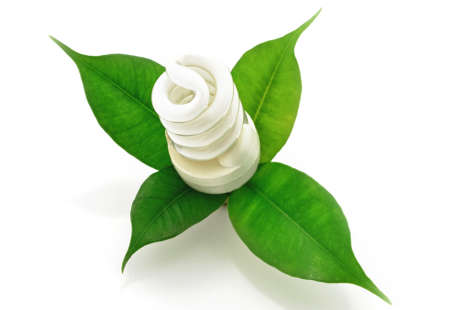 Zářivka Bio s zelený list ekologické koncepce Reklamní fotografie