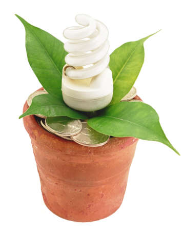 Fluorescent lamp in flowerpot with money coins and green leaf economy conceptual Stock Photo - 12807184