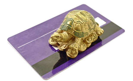 Feng Shui Tortoise Money sitting on credit card rich concept photo