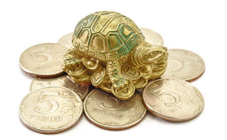 Money Coins with Turtle sitting Feng Shui
