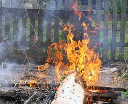Llama la basura fuego quema ilegal photo