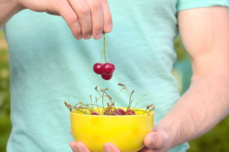 Cherry Berries in Man Hands fingers with yellow plate natural organic fresh product
