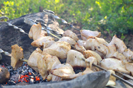 Grilled White Meat preparing shish kebab Barbecue fresh Food Picnic Outdoor