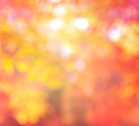 Abstract Blur Background Autumn Trendy Colors with natural Bokeh with sun lights photo