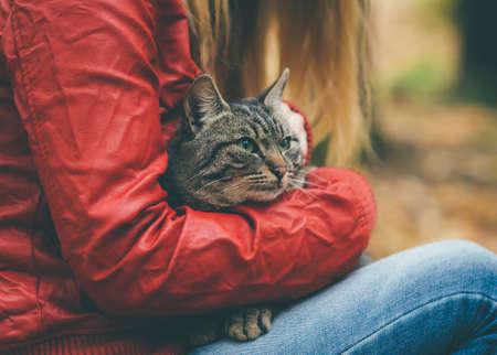 灰色的貓無家可歸者和女人擁抱戶外生活方式和友好幫助的概念
