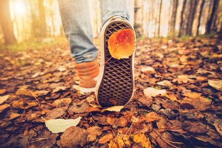 sneakers pés que andam nas folhas da queda ao ar livre com estação do outono natureza no fundo Lifestyle Moda estilo moderno Banco de Imagens