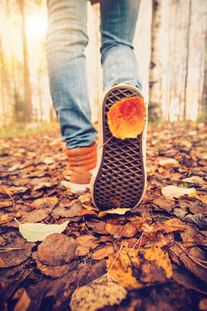 pies masculinos: Pies de la mujer zapatillas de deporte que recorren en hojas de la caída al aire libre con la naturaleza temporada de otoño en el fondo Estilo de Vida Moda estilo de moda