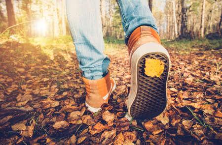女人腳的運動鞋走在落葉與室外季節秋自然背景生活方式時尚新潮的風格 版權商用圖片