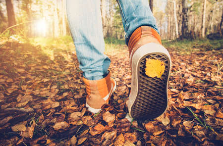 Femme Pieds baskets marchant sur la chute des feuilles en plein air avec la saison d'automne nature sur fond Lifestyle Mode style branché Banque d'images