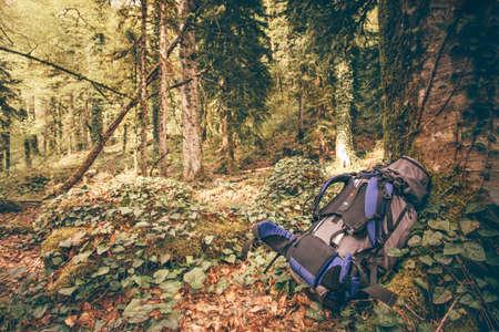 アウトドア キャンプ装置の森の自然を背景にハイキングのバックパックします。