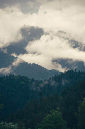 cloudy moody: Cloudy Mountains forest beautiful landscape rainy moody weather colors scenic background