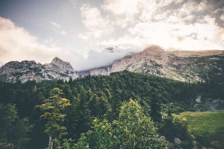 fisht: Rocky Mountains and coniferous forest Landscape Summer Travel scenic view cloudy sky