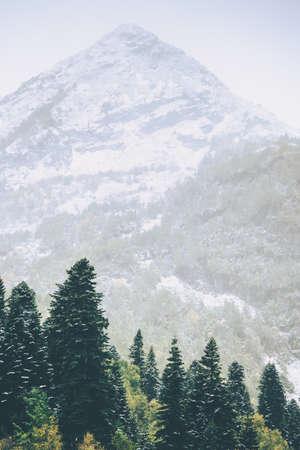 Montagnes de pointe et Conifères Forêt Paysage Voyage sereine vue panoramique morose temps brumeux Banque d'images