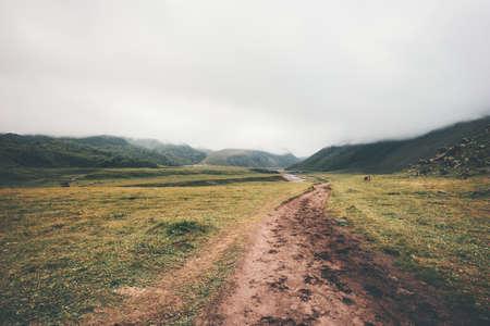 Foggy Montagnes route Paysage d'été Voyage paysages serein nature sauvage vue calme brumeux style minimaliste Banque d'images