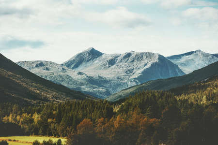 Mountains and forest Landscape in Norway aerial view scandinavian nature Travel wilderness Stockfoto