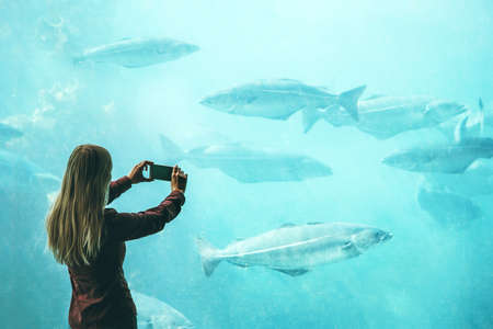 Woman taking photo by smartphone of fish in big aquarium Travel Lifestyle concept modern technology