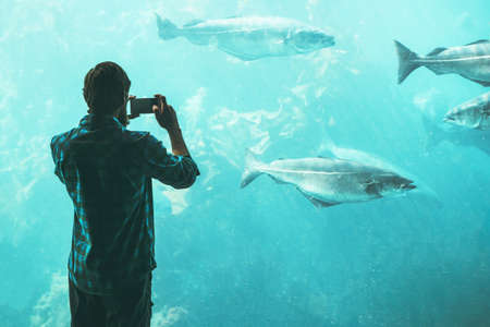 Man tourist taking photo by smartphone of big aquarium fish Travel Lifestyle concept modern technology