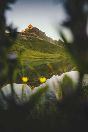 Mountains lake reflection and flowers framing seasonal Landscape Travel view serene morning scenery wild nature