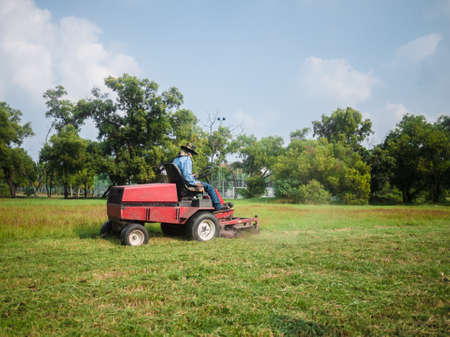 Male gardener ride-on lawn mower to cutting grass in garden. Imagens