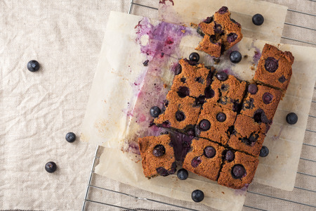 Blueberry square bars on paper baking sheet with blueberries, paleo low carb dessert, top view