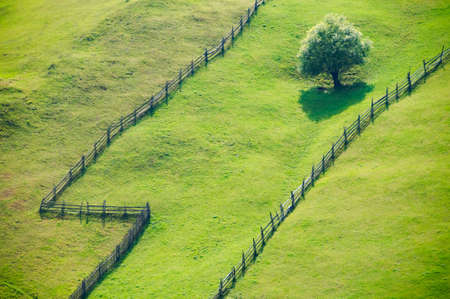 Open grass fields separated by fences photo