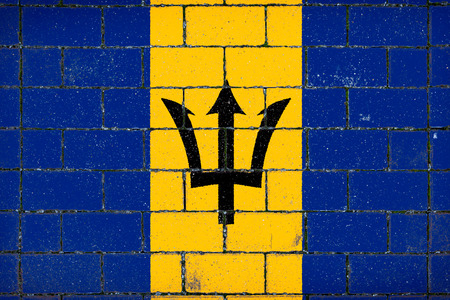 National flag of Barbados against a background of a stone background covered with moss