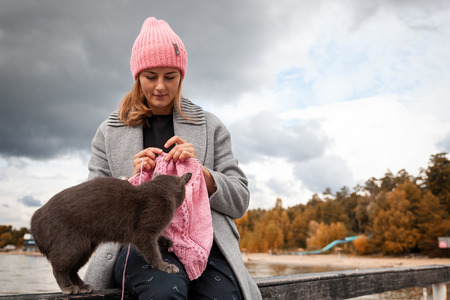 Close-up of woman hands knitting  pink  wool hat with needle,    next is a beautiful gray cat against the background  of the sea  in sunny autumn day . Freelance creative working and living concept Banque d'images