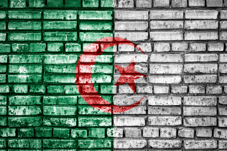 National flag of Algeria on a brick background. Concept image for Algeria: language , people and culture.