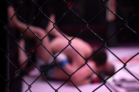 Close-up of the metal cage, in the background arena of the octagonal scene by the battle of two professional male athletes, in the background is the judge. Fights without rules according to MMA version 免版税图像