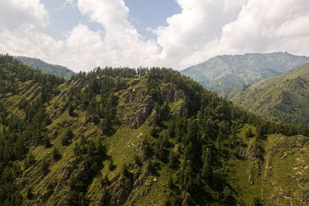 stunning view of the high mountains with forest, crevices. Beautiful view of the Hill on a warm summer day from a birds eye view Stockfoto