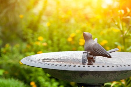 Decorative decoration of the garden. Ceramic pot with a statue of a small metal bird drinking water. green grass in the background