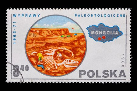 Novosibirsk, Russia - January 07, 2020: stamp  nature collection printed in Poland  shows Paleontological excavations by archaeologists of dinosaurs in Mongolia,  a postage stamp circa 1980