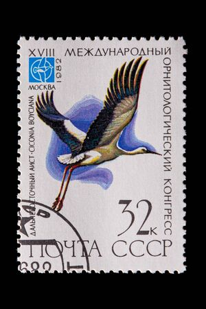 Novosibirsk, Russia - January 07, 2020: stamp bird collection printed in USSR  shows white adult far eastern stork flies in the white background,  a postage stamp circa 1982