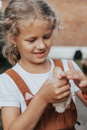 The little girl laughs cheerfully and touches the little yellow chicken on the farm. Contact petting zoo, the concept of communication between a child and animals.