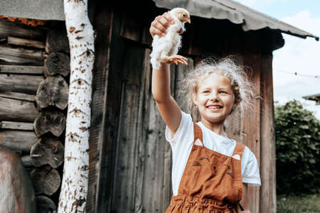 Little child girl is holding the chicken on the farm. Portrait of little girl with chicken