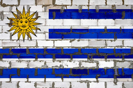 The national flag of Uruguay painted on a wall of sibit blocks with cement. The symbol of the country. 스톡 콘텐츠