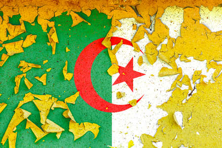 The national flag of Algeria is painted on an old metal wall with ragged paint. Country symbol.