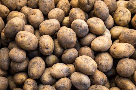 Fresh organic brown unpeeled potatoes on a fresh market, background. Potato texture. Lots of organic vegetables