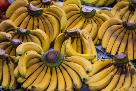 Close-up of yellow bananas for background, texture. Bundles of minibananas in a shop window, market. Fresh raw fruits