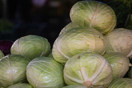 Close up of the green cabbage, background. Fresh cabbage variety grown in the shop. Tasty and healthy food