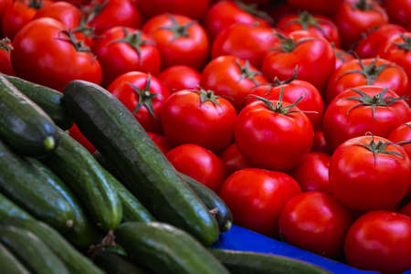 Tomatoes and cucumbers background. Fresh Tomatoes and cucumbers variety grown in the shop. Vegetables for salad, entree and soup