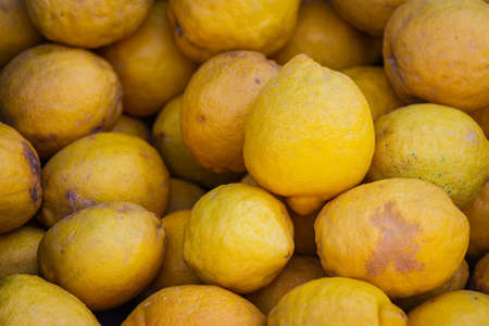 Close up of the yellow lemon, background. Fresh lemons variety grown in the shop.