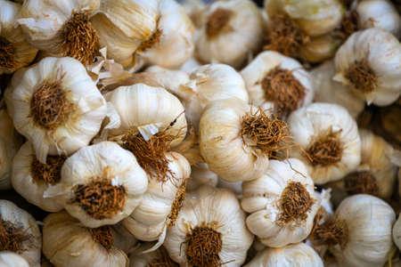 Young garlic in box, background. Fresh garlic variety grown in the shop. Tasty and healthy food 版權商用圖片