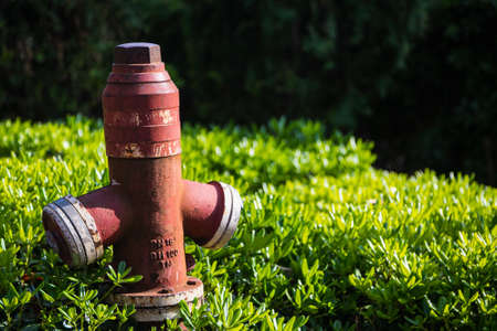 Close-up - overhead red pressurized fire hydrant against green bush background