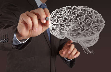 Businessman hand drawing a brain on white board photo