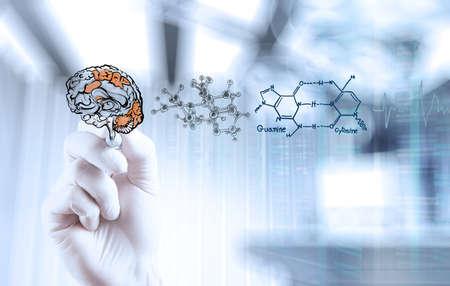 概念とコンピューターのインターフェイスを持つ医者の神経学者手図面脳